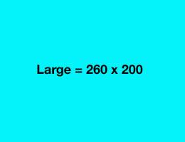 bannersize-large
